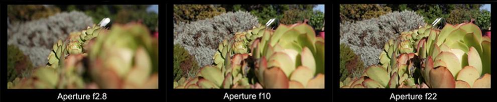 5 کارکرد اصلی دوربین