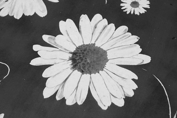 7 روش تبدیل عکس رنگی به سیاه سفید در فتوشاپ