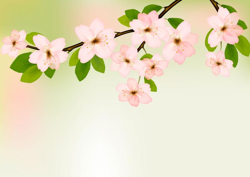 روش ایجاد گل های بهاری در ایلوستریتور با ابزار مشگرادینت