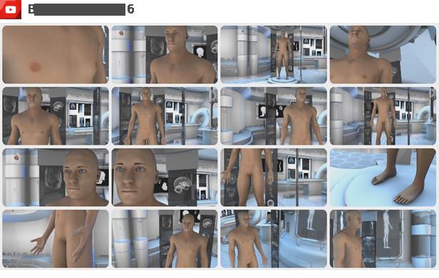 پروژه افترافکت مجموعه عناصر آناتومی بدن انسان